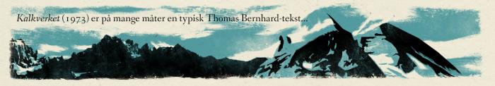 14811-espen-terjesen-thomas-bernhard-comic-essay-3