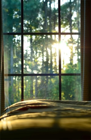 6d531-early-morning-window-sunlight