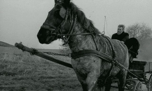 A still from Béla Tarr's The Turin Horse (2011)