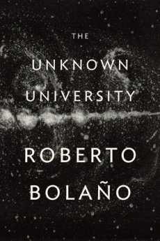 Roberto Bolaño, The Unknown University