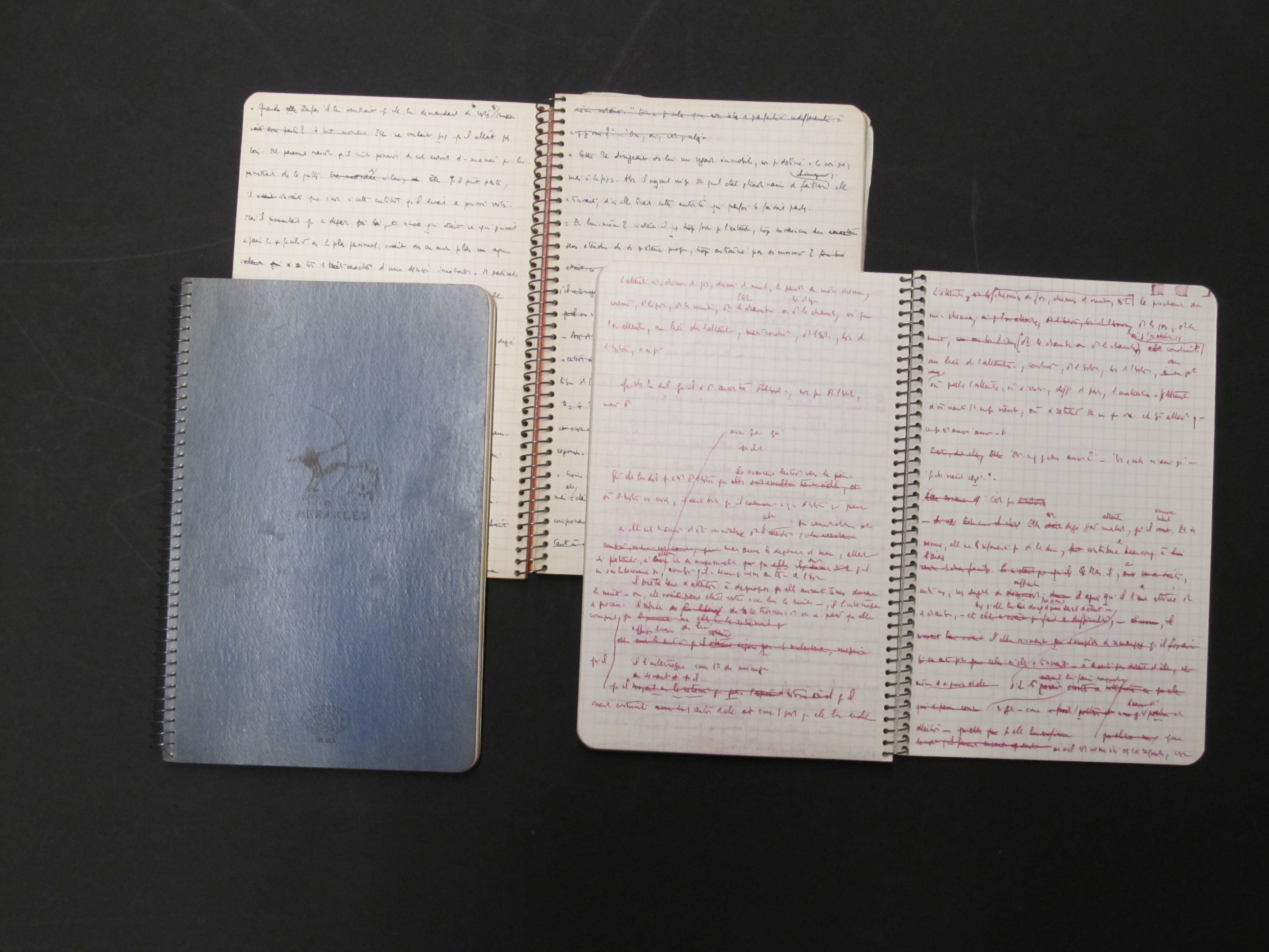 Dissertation - referencing an unpublished notebook?