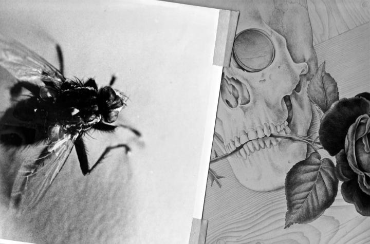 Some of Richard Chopping's preliminary images for Ian Fleming's Goldfinger. Image courtesy of Jon Lys Turner.