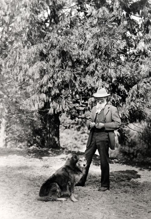 johnmuirdog